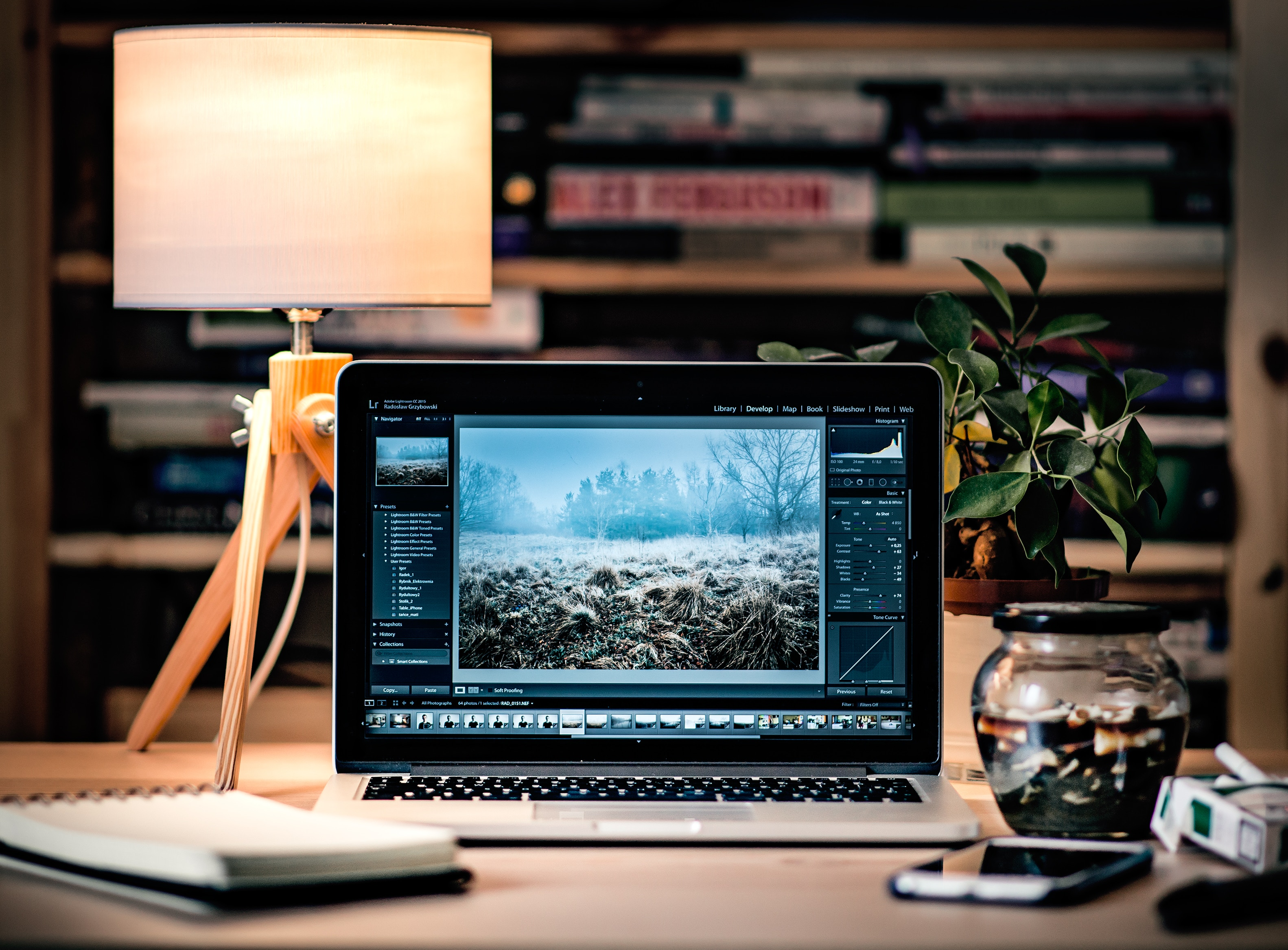 Best free sites for royalty-free stock images